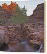 Dark Canyon Creek Wood Print