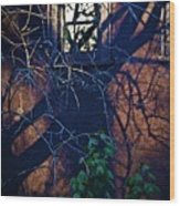 Dark Crossings Wood Print