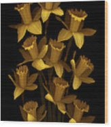 Dark Daffodils Wood Print