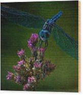 Dark Dragonfly Wood Print