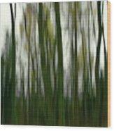 Dark Forest 3 Wood Print