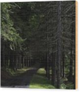 Dark Forest Road Wood Print