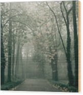 Dark Gloomy Alley In Woods Wood Print