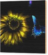 Dark Glow Butterfly Wood Print