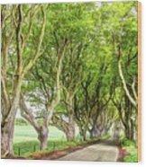 Dark Hedges, Game Of Thrones Wood Print