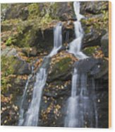 Dark Hollow Falls Shenandoah National Park Wood Print