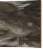 Dark Mystery Wood Print
