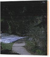Dark Path Wood Print