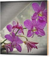 Dark Pink Orchids All In A Row Wood Print by Eva Thomas