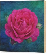 Dark Pink Rose Wood Print