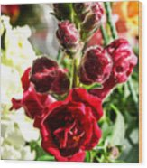 Dark Red Fancy Snapdragon Wood Print