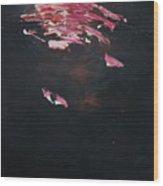 Dark Serie, IIi Wood Print by Daniel Hannih