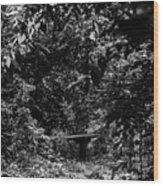 Dark Summer Woods Wood Print