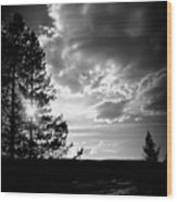 Dark Sunset Wood Print by Carrie Putz