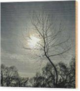 Dark Sunshine Wood Print
