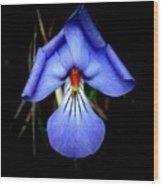 Dark Violet Wood Print