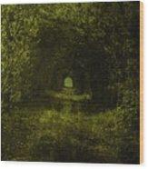 Dark Wood Wood Print