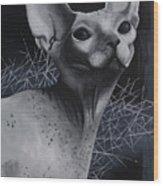 Darkness Cat Wood Print