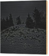 Darkscape Wood Print by Timothy Hedges
