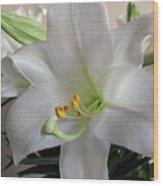 Darn Beautiful Flower Wood Print