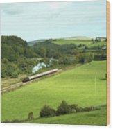 Dart Valley Steam  Wood Print