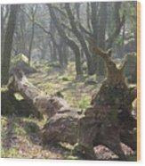 Dartmoor Woods Wood Print