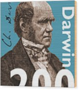 Darwin 200 Wood Print