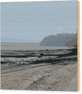 Dash Point Wood Print