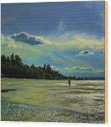 Dash Point State Park Wood Print