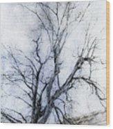 Daunting Wood Print