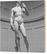 David By Michelangelo Wood Print