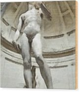 David By Michelangelo Pencil Wood Print