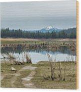 Davis Creek And Maiden Peak Wood Print