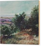 Davis Mountain Wood Print