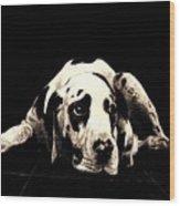 Dawg Wood Print
