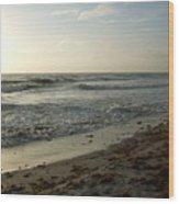 Dawn Beach Wood Print