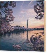 Dawn Blossoms Wood Print