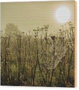 Dawn Dew Wood Print