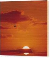 Dawn Flight Wood Print