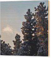 Dawn Light Wood Print