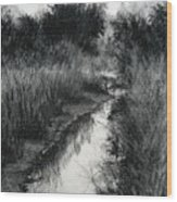 Dawn Marsh Wood Print