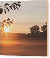 Dawn Of A Brand New Day  Wood Print by Cathy  Beharriell