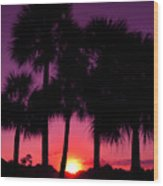 Dawn Of Another Perfect Day Wood Print