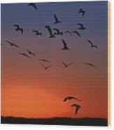 Dawns Action Wood Print