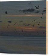 Dawns Light Wood Print