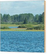 Day At The Wetlands Wood Print