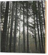 Day Break Wood Print