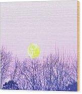 Day Light Moon Wood Print