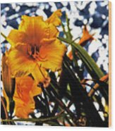 Day Lilies In  Space Wood Print