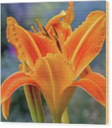 Day Lily Bright Wood Print